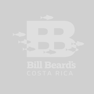 Bill Beard Costa Rica Logo