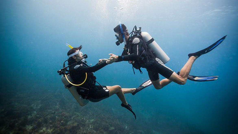 Costa Rica Dive Report + Honeymoon Special